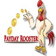 PaydayRooster